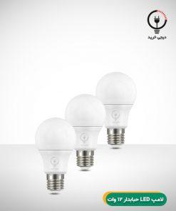 لامپ LED حبابدار 12 وات